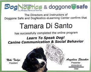 Tamara Di Santo Pet Proffessional Guild Best Friend Dog Care dog training, behaviour and relation ship coach Adelaide South Australia