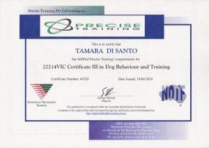 Tamara Di Santo NDTF Certificate 3 Dog Behaviour and Training Best Friend Dog Care dog training, behaviour and relation ship coach Adelaide South Australia