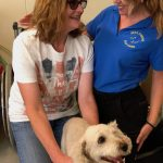 Tamara Di Santo Tamara Di Santo Best Friend Dog Care dog training, behaviour and relation ship coach Adelaide South Australia