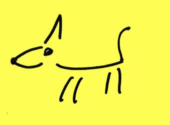 Best Friend Dog Care Adelaide