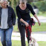 How to walk a dog on leash dog behavioural training, Tamara Di Santo Best Friend Dog Care dog training, behaviour and relation ship coach Adelaide South Australia