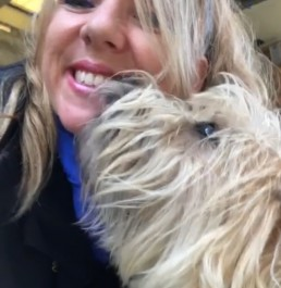 dog behavioural training, Tamara Di Santo Best Friend Dog Care, dog training, behaviour and relation ship coach Adelaide South Australia, living with dogs, Cairn Terrier training
