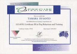 Tamara Di Santo NDTF Certificate 3 Dog Behaviour and Training Best Friend Dog Care dog training, behaviour and relation ship coach Adelaide South Australia