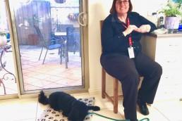 Best Friend Dog Care dog training, behaviour and relation ship coach Adelaide South Australia Tamara Di Santo