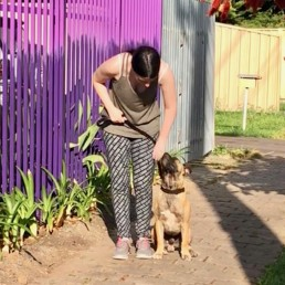 dog behavioural training, Tamara Di Santo Best Friend Dog Care, dog training, behaviour and relation ship coach Adelaide South Australia, living with dogs, dog walking, train dog to walk with manners, walk my dog