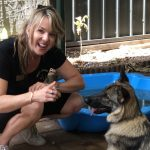 How to keep my dog from getting board dog behavioural training, Tamara Di Santo Best Friend Dog Care, dog training, behaviour and relation ship coach Adelaide South Australia, living with dogs, german shephard