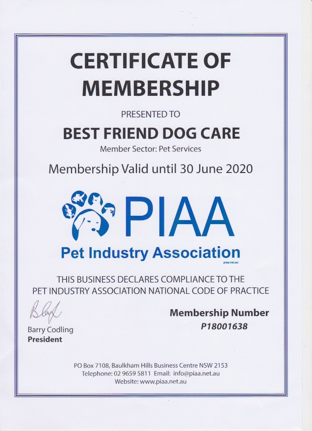 National Best Friends Day 2020.Piaa Pet Industry Association Best Friend Dog Care Adelaide
