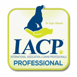training, best friend dog care, dog training adelaide, tamara di santo, dog training, dog behaviour, adeladie dog training, positive dog training, adelaide reward training,You are in Safe Hands, Tamara Di Santo and Best Friend Dog Care are members of International Association of Canine Professionals