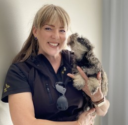 best friend dog care, puppy training adelaide, dog training, positive dog training, reward dog training, tamara di santo, adelaide dog training