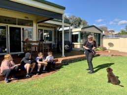 best friend dog care, puppy training adelaide, dog training, positive dog training, reward dog training, tamara di santo, adelaide dog training, dog trainer, training with tamara ,dog training, puppy training, online dog training, dog walking, dog walker adelaide, trick training for dogs, how to train puppy, best friends, best friend dog training, groodle puppy