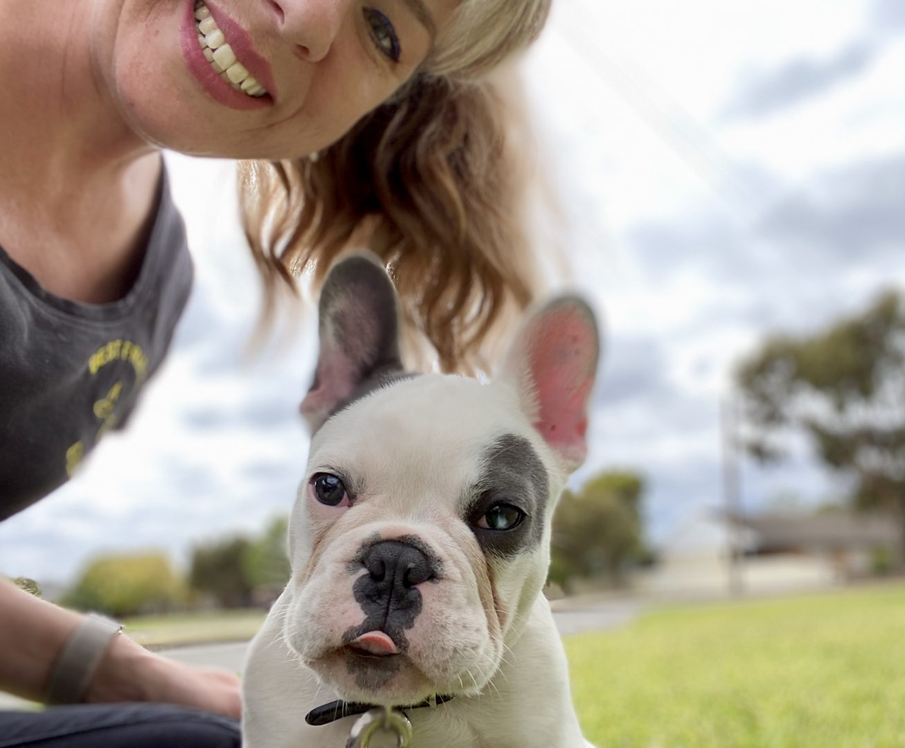 dog trainer, training with tamara ,dog training, puppy training, online dog training, dog walking, dog walker adelaide, trick training for dogs, how to train puppy, best friends, best friend dog training, french bulldog, frenchie
