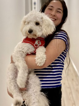 dog trainer, training with tamara ,dog training, puppy training, online dog training, dog walking, dog walker adelaide, trick training for dogs, how to train puppy, best friends, best friend dog training, poodle